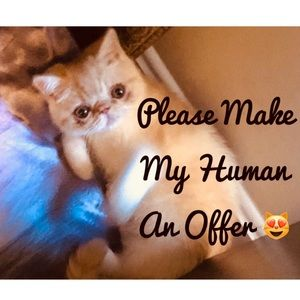 Other - 😻 Please Make My Human An Offer 😻